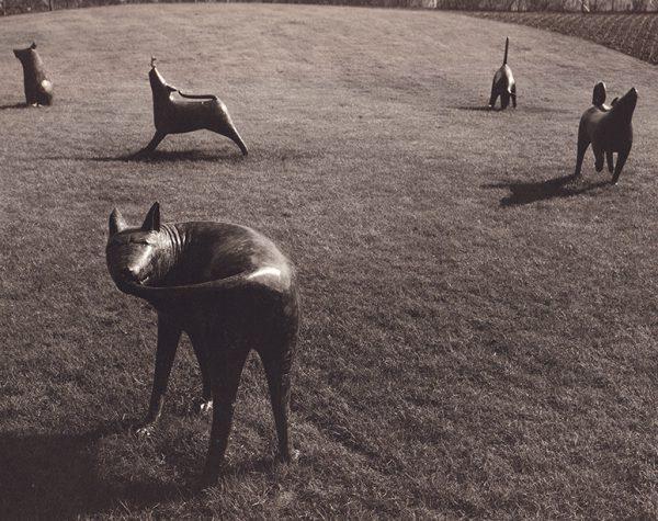 Shona Kinloch Seven Glasgow Dogs 1988